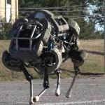 Google купила компанию-разработчика знаменитого «робомула»
